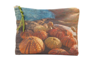 Sea urchins - Mini Pouch